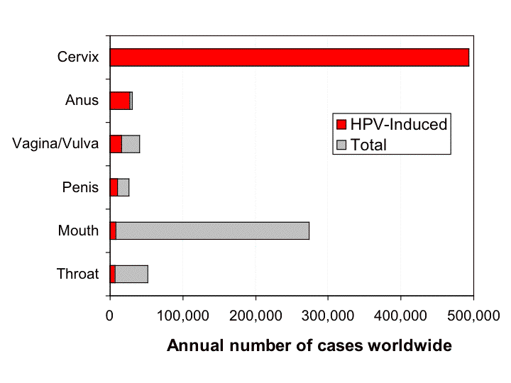 Graph showing the fraction of cancers estimated to be induced by HPV (from 2006).